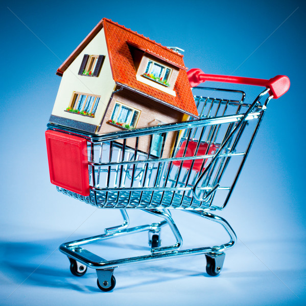 shopping cart and house Stock photo © cookelma