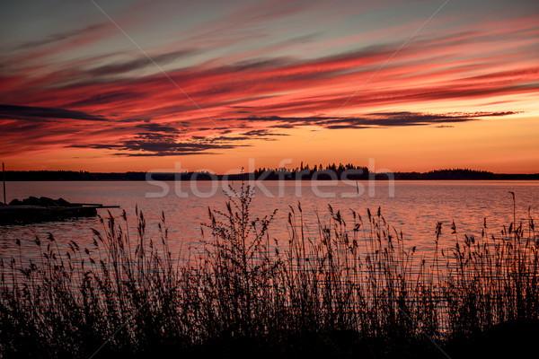 Bíbor naplemente öböl tengerpart égbolt természet Stock fotó © cookelma