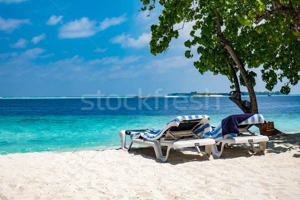 Maldive spiaggia tropicali acqua panorama verde Foto d'archivio © cookelma