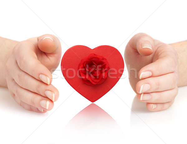 hands and heart Stock photo © cookelma