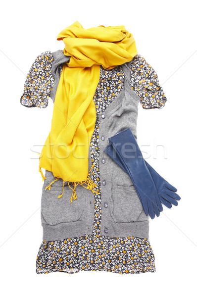 Female dress and accessories Stock photo © cookelma