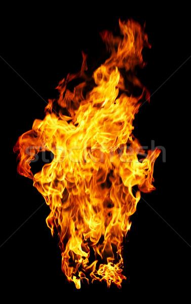Tűz fotó fekete háttér narancs piros Stock fotó © cookelma