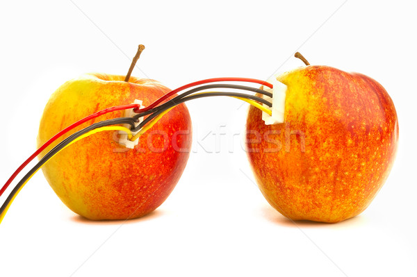 Two fresh apples connected by wires.  Stock photo © cookelma