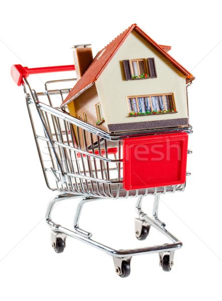 Сток-фото: Корзина · дома · белый · бизнеса · деньги · строительство