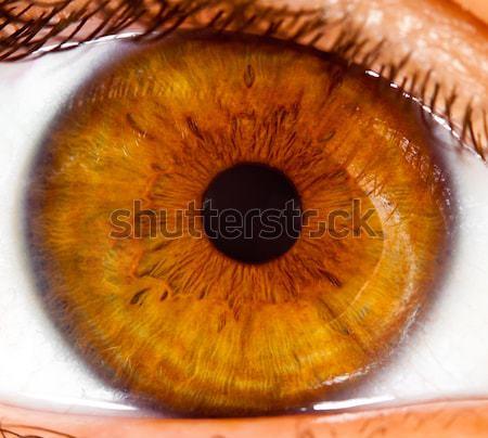 Menselijke oog persoon vrouw vrouwen Stockfoto © cookelma