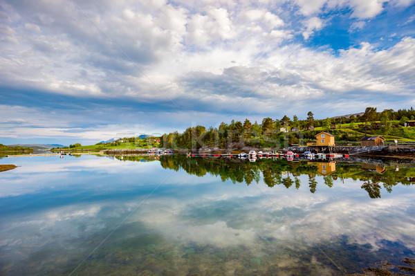 Beautiful Nature Norway. Stock photo © cookelma