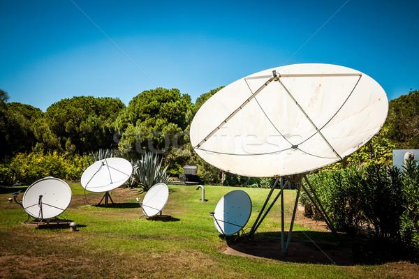 衛星 料理 自然 技術 木 ストックフォト © cookelma
