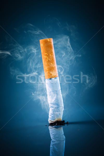 Cigarette butt - No smoking. Stock photo © cookelma