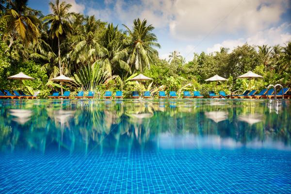 Tropical swimming pool Stock photo © cookelma