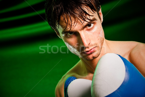 Boxe homme gants de boxe transpiration tous main Photo stock © cookelma