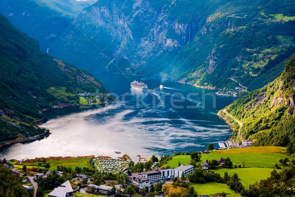 Norvégia gyönyörű természet hosszú ág el Stock fotó © cookelma