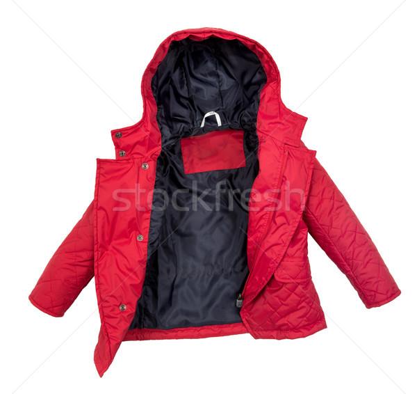 Kobiet zimą kurtka odizolowany biały kobieta Zdjęcia stock © cookelma