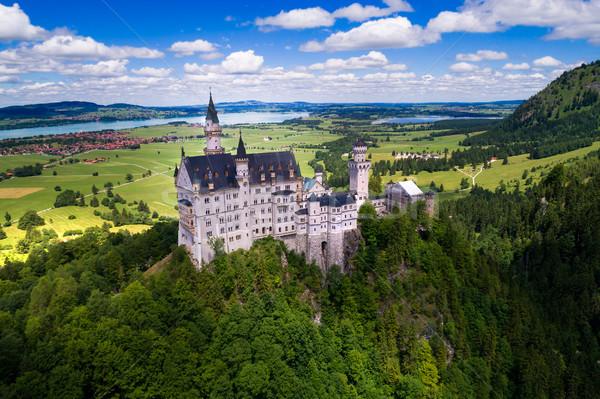 Castillo de Neuschwanstein alpes Alemania forestales montana verano Foto stock © cookelma