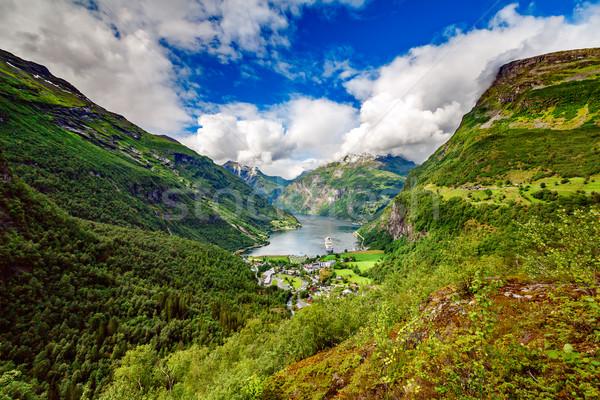 Норвегия красивой природы долго филиала Сток-фото © cookelma