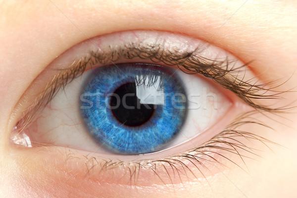 Human eye. macro shooting... Stock photo © cookelma