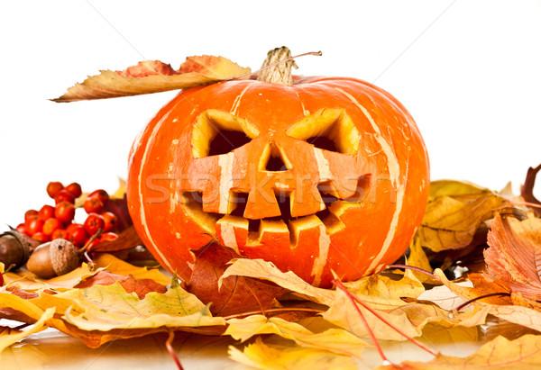 halloween, old jack-o-lantern on white Stock photo © cookelma