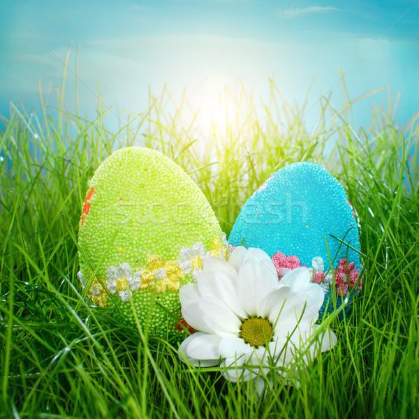 Stok fotoğraf: Dekore · edilmiş · paskalya · yumurtası · çim · mavi · gökyüzü · gökyüzü · çiçek