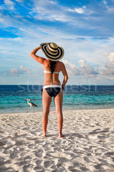 Woman and tropical beach in the Maldives. Stock photo © cookelma
