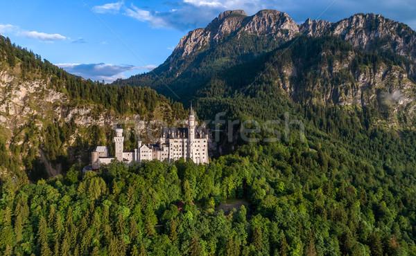 Neuschwanstein Castle Bavarian Alps Germany Stock photo © cookelma