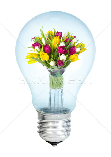 Electrobulb with a bunch of tulips Stock photo © cookelma