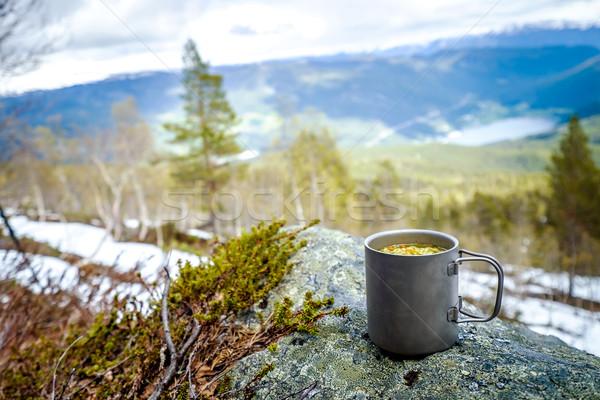 путешествия титан Кубок обед путешествия Сток-фото © cookelma