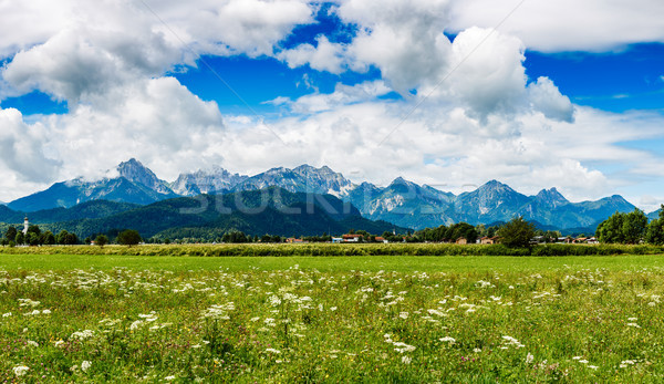 Beautiful natural landscape of the Alps. Forggensee and Schwanga Stock photo © cookelma