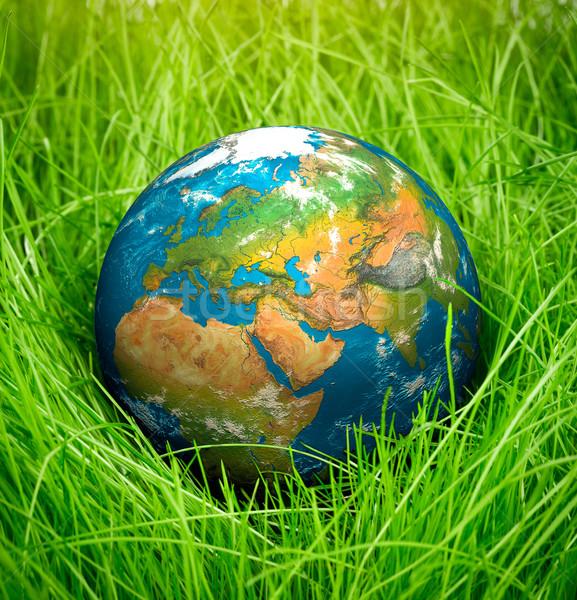 Föld napja földgömb hazugságok zöld fű tavasz terv Stock fotó © cookelma