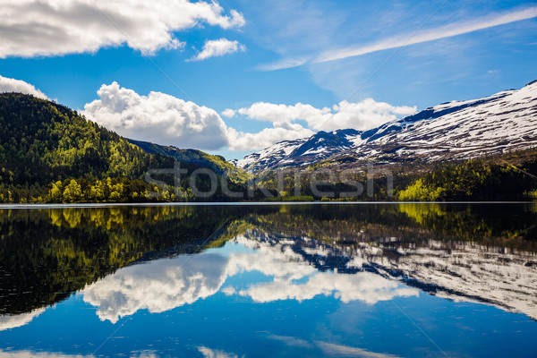 Beautiful Nature Norway. Stock photo © cookelma