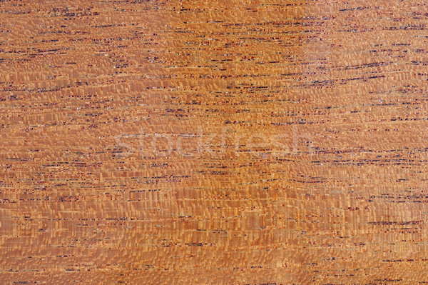 background - textured. Piece of the varnished tree. Stock photo © cookelma