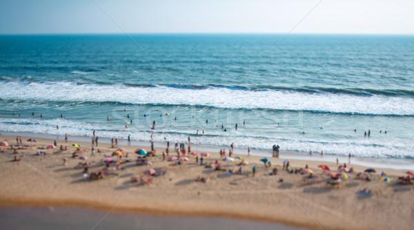 Beach on the Indian Ocean Stock photo © cookelma