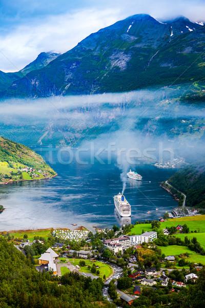 Norwegia piękna charakter długo oddziału Zdjęcia stock © cookelma