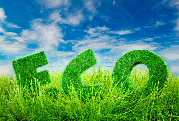 Eco concept Letters on the green grass on blue sky background. Stock photo © cookelma
