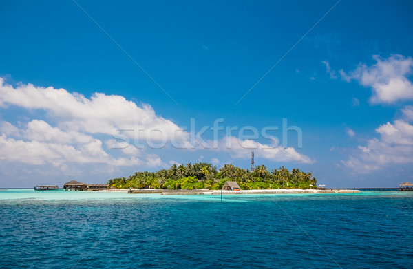 Maldives Indian Ocean Stock photo © cookelma