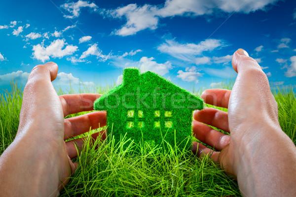 Eco House Stock photo © cookelma