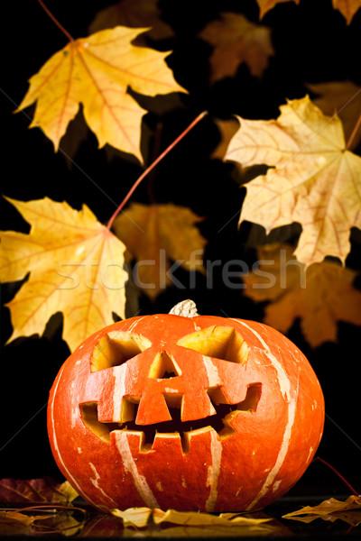 halloween, old jack-o-lantern on black Stock photo © cookelma