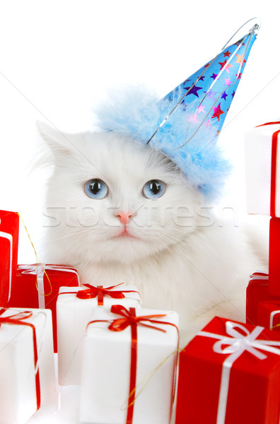 White cat with gifts Stock photo © cookelma