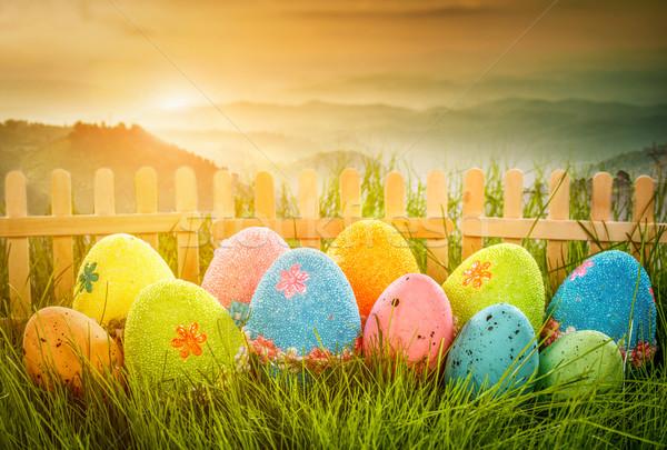 украшенный пасхальных яиц трава небе цветок весны Сток-фото © cookelma