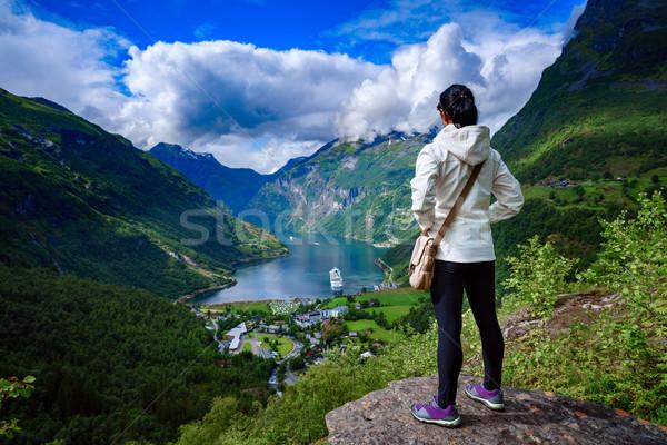 Norwegia piękna charakter panorama długo oddziału Zdjęcia stock © cookelma