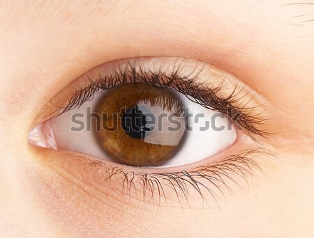 Human eye close up ... Stock photo © cookelma