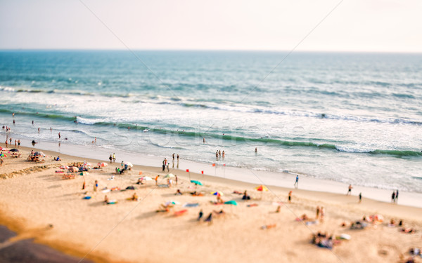 Beach on the Indian Ocean Stock photo © cookelma