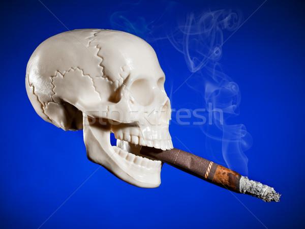 Smoking skull Stock photo © cookelma