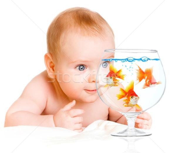 Bebek su balık doğa mavi kırmızı Stok fotoğraf © cookelma