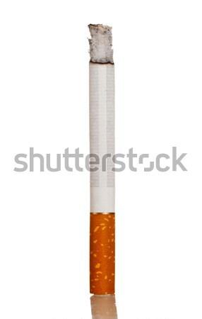 Lighted cigarette Stock photo © cookelma