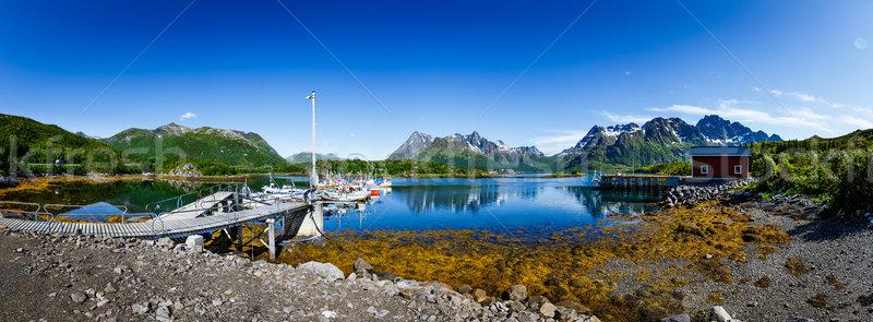 Lofoten archipelago panorama Stock photo © cookelma