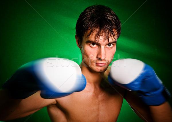 Faire sauter boxeur homme transpiration tous gants de boxe Photo stock © cookelma