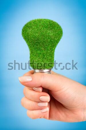 Stok fotoğraf: Eco · ampul · el · yalıtılmış · beyaz · arka · plan