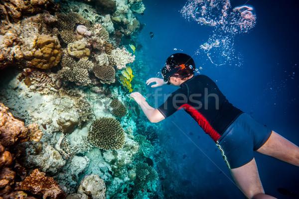 Maldív-szigetek indiai óceán korallzátony búvárkodik agy Stock fotó © cookelma