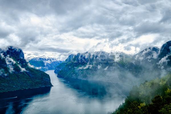 Beautiful Hardanger fjorden Nature Norway. Stock photo © cookelma