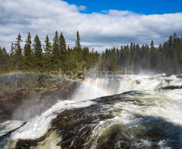 Waterval westerse een mooie watervallen Zweden Stockfoto © cookelma