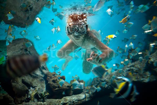 freedive Stock photo © cookelma